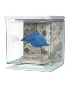AQUARIO KIT P/BETTAS 2 Lt. SKULL