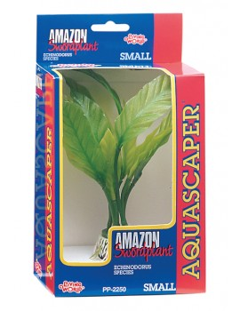 PLANTA AMAZON SWORD PQ.-CX