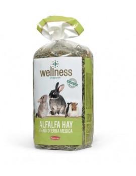 WELLNESS ALFALFA HAY | FENO DE ALFAFA - 500GR
