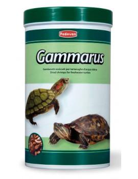 GAMMARUS P/TARTARUGAS 250 ml, 30g